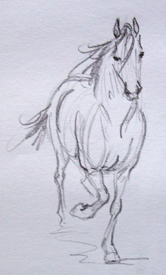 curso gratis de desenho de cavalos www